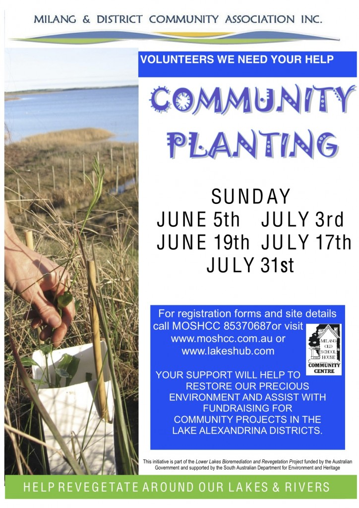 Tree Planting Poster 2011
