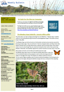 Lakes Hub Bulletin, No 102