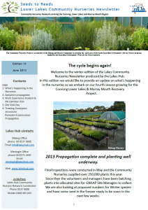 Seeds to Reeds, CNN Newsletter