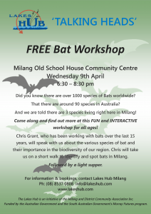 Bat Workshop April 9 2014