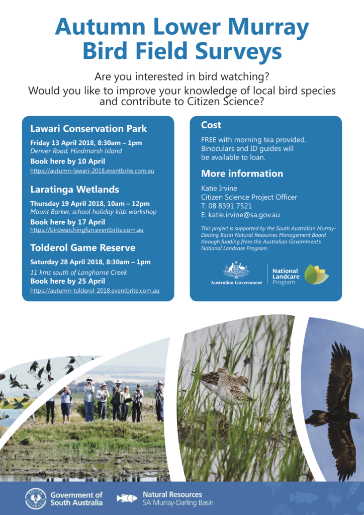 2018 bird ID flyer lower Murray autumn